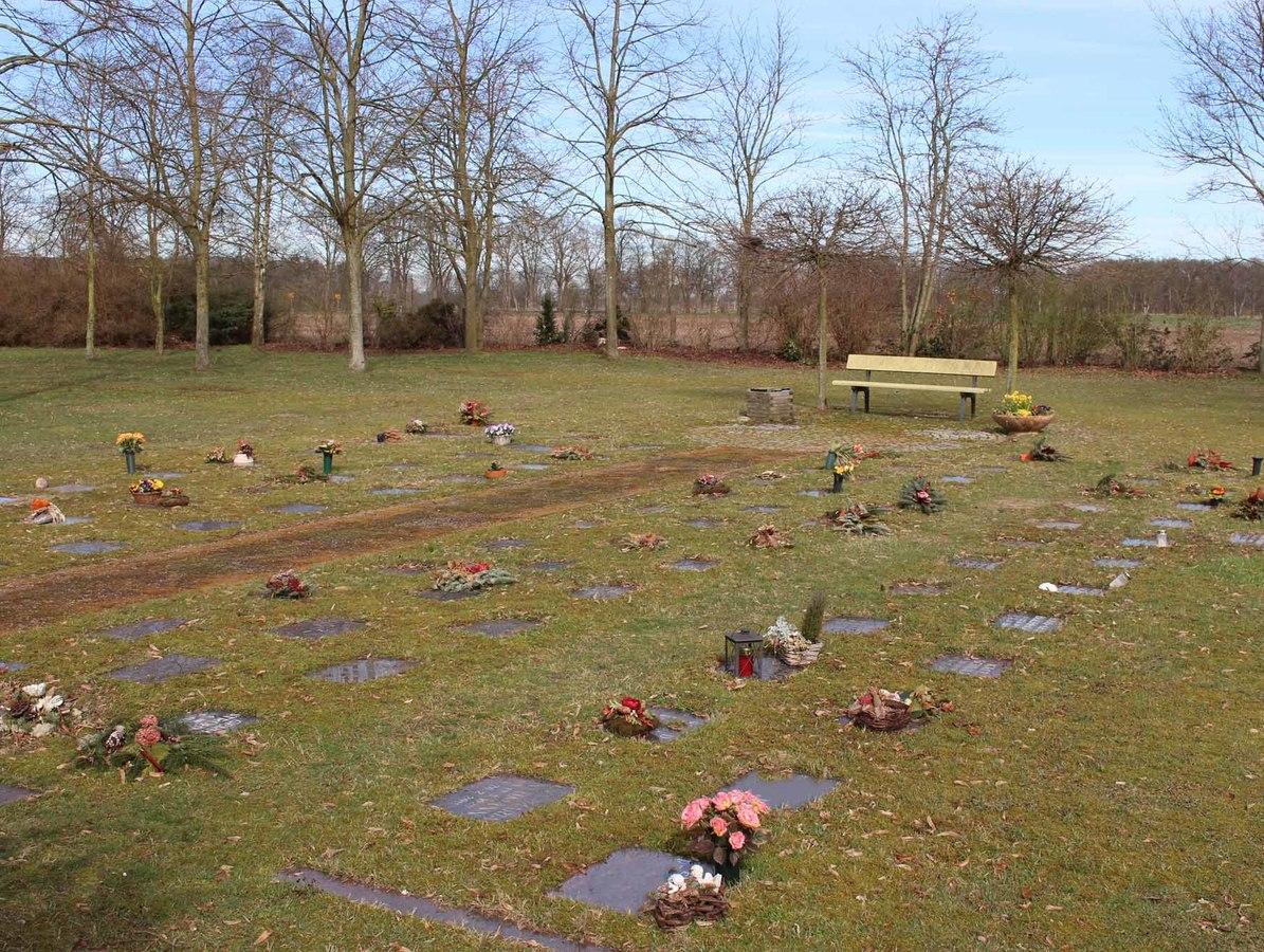Urnengrab ohne Pflegeverpflichtung (Rasengrab)