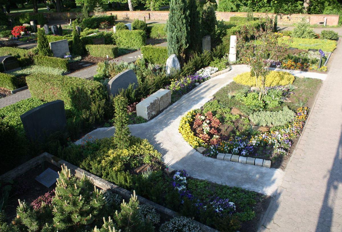 Garten der Sternenkinder