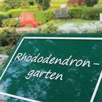 Rhododendron-Garten